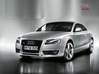 Audi A5: киска, которой не нужен «Вискас»