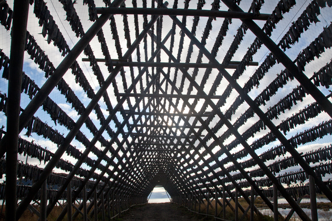 Great Wall Hover 5: Китайские путешественники
