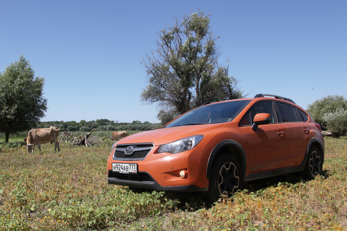 Subaru XV Царица степей